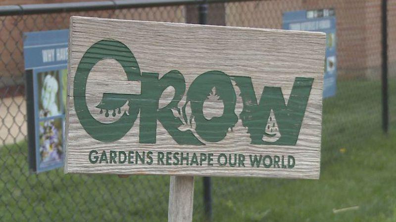Plant Swap Season Debuts at the Grow Community Garden