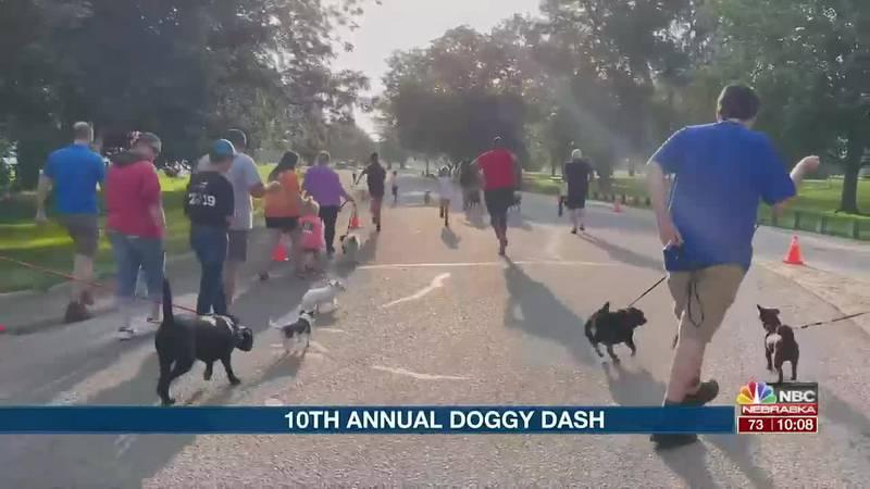 10th Annual Doggy Dash