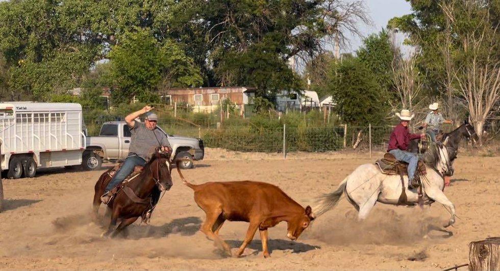 1st Annual Ranch Rodeo, Wellfleet Fall Festival