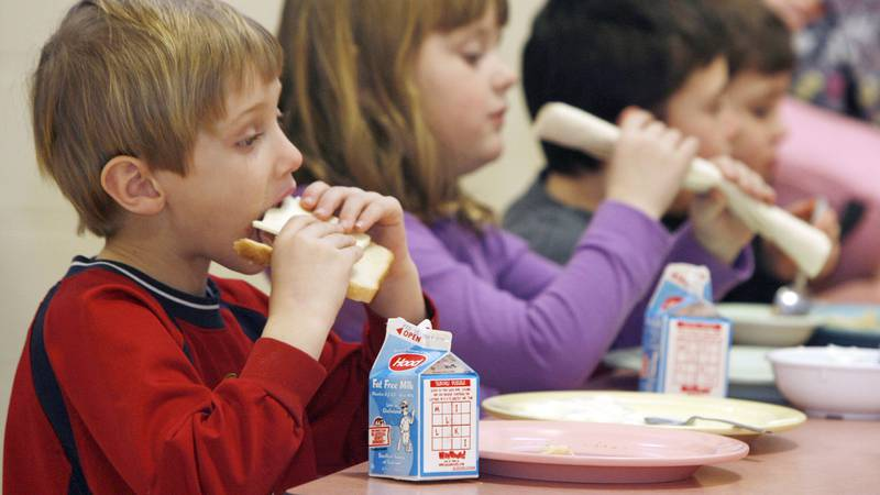 This Wednesday, Feb. 3, 2010 photo shows students eating lunch at Sharon Elementary School in...