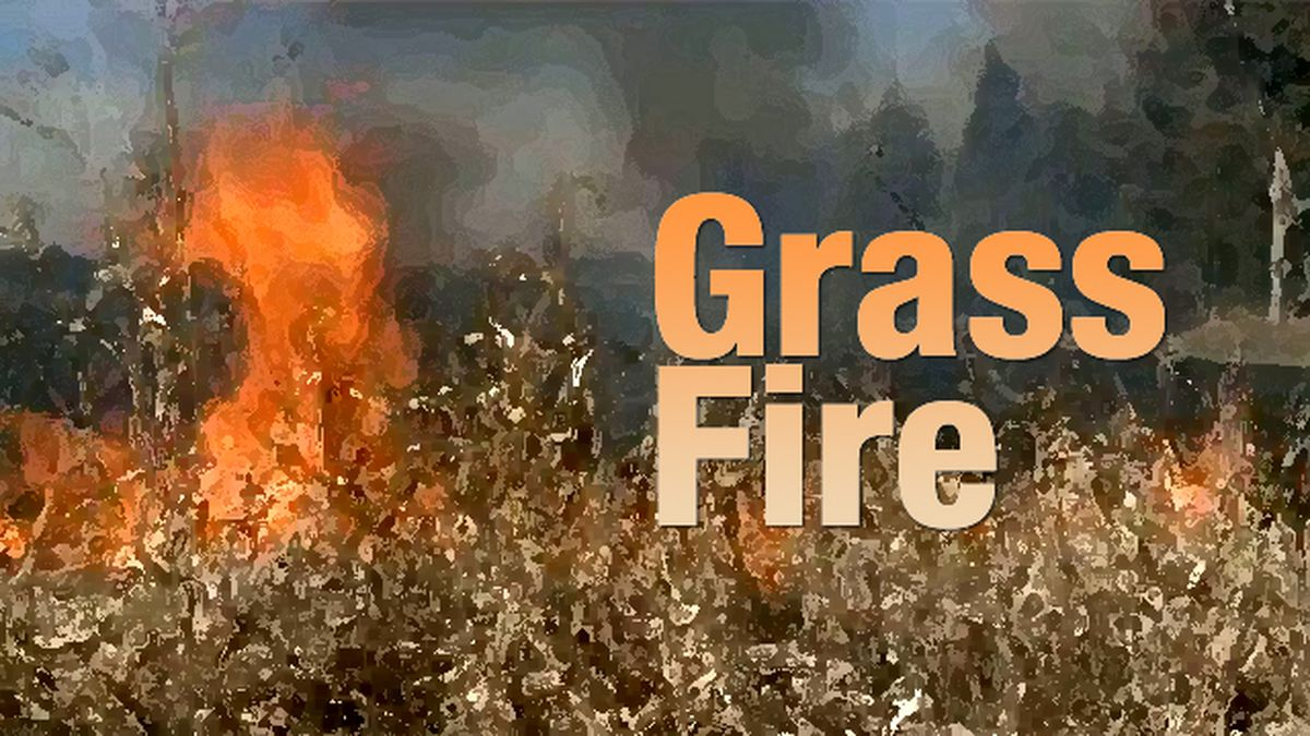 The North Platte Fire Department responded to a grass fire early Tuesday. Law enforcement is investigating the case as arson.