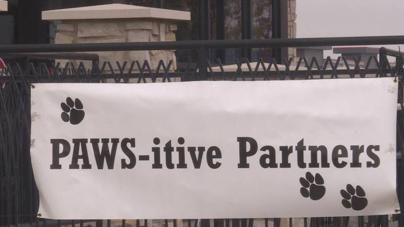 Pawsitive Partners Humane Society hosting their On Saturday afternoon, the Pawsitive Partners...