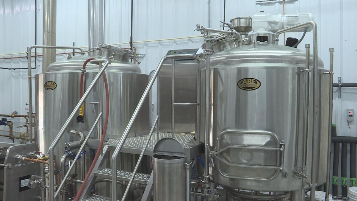 Peg Leg Brewery begins its first batch of beer in preparation for their opening in April. (Source: Jace Barraclough)