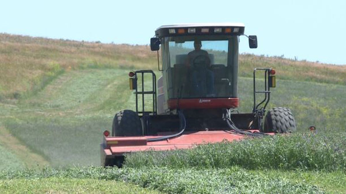Lincoln County authorized for emergency haying and grazing use of CRP acres.
